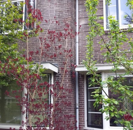 Nijmegen
